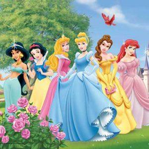 principesse Festa a tema per bambini